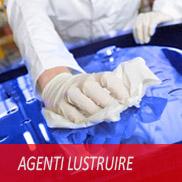 Agenti Lustruire