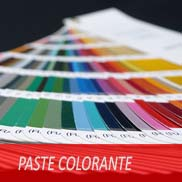 Paste Colorante